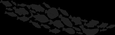 Mar web Taberna da Galera Restaurante coruña